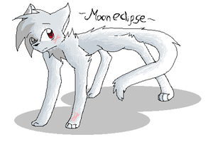 :AT: Mooneclipse by Cinderfall129