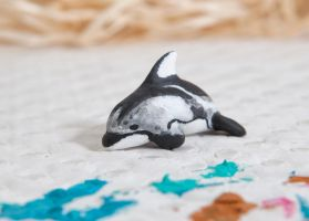 Pacific white sided dolphin totem by lifedancecreations