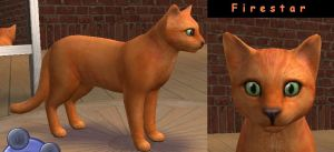 Warriors Ref - Firestar by rebelwolfchris