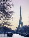 Paris snow 2009 by Guilllaume