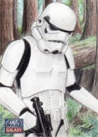 Star Wars G7 - Stormtrooper-Endor Sketch Art Card by DenaeFrazierStudios