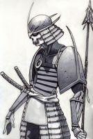 grey ronin by giantrobo88