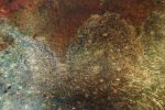 Texture 13 by obsession-stock