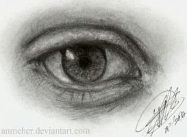 Eye ATC/ACEO by anmeher