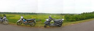 Panorama Golf Dong Mo 360 by trocloc