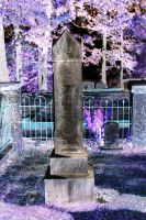 The Grave by Eaglecatcher25