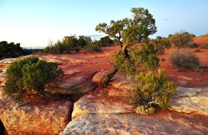Sunset on Canyonlands by NorthOne