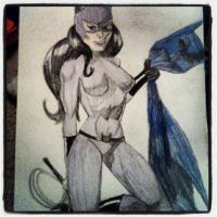 Catwoman by malloryjohnson15