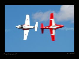Snowbirds 05 by jdmimages