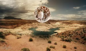 Giraffe in bubble by peoplegrapher