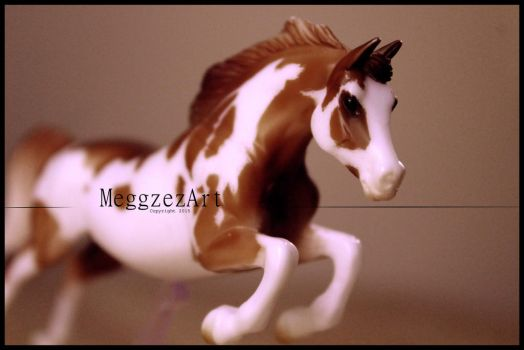 Patriot | Custom Breyer Model by MeggzezArt