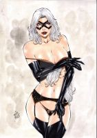 black cat by laniosena