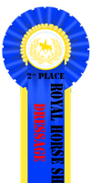 Second Place Dressage Ribbon by Horse-Emotion