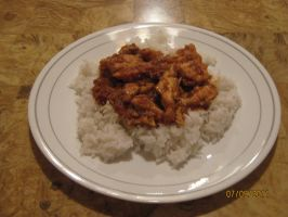 Chicken Curry and Rice by ChapterAquila92