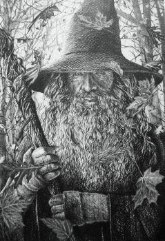 Gandalf by AlexndraMirica