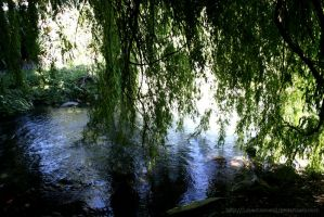Willow Dance by lunaobsessed