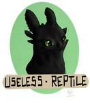 Toothless Bagde by WCRFE