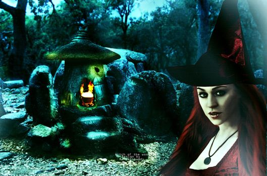 Witch of The Woods by Innfhinithydesigns