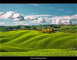 Green Rolling Fields by Marcello-Paoli