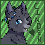 cinderpelt icon by emerald344
