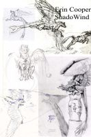 drolphon old sketches by Shadowind
