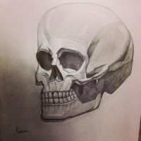 skull pencil drawing by DreamySouls