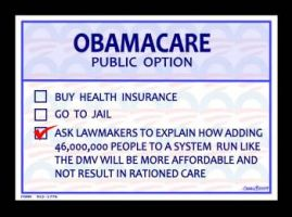 Obamacare Ballot by Conservatoons