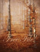 Autumn Wood free background by moonchild-ljilja