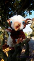A little forrest griffon baby by Veter-Fantasy