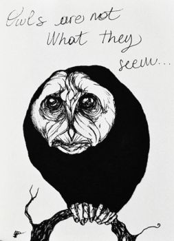 Owls are not what they seem by dcf