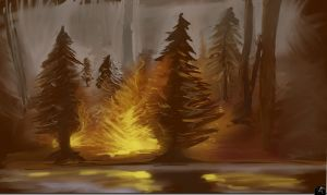 Fire in the forest by spidermc