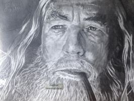 'Gandalf' (Lord Of The Rings) - 2014 - (Drawing) by Stevegillettart