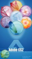 Adobe Creative Suite 2: Clear by Anexos