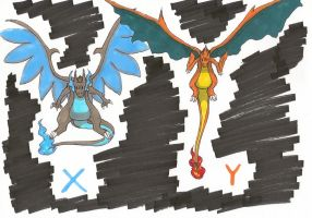 X and Y Charizards by IcelectricSpyro