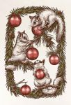 Sugar Glider Christmas Card by T-Tiger
