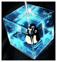 Penguin by pgmt
