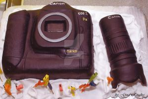 Camera Cake by ginas-cakes