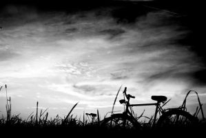 my old bike... by areeen