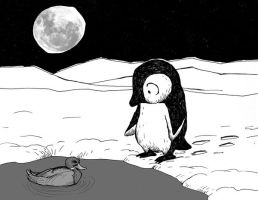 Lonely penguin no.6 by Hoed