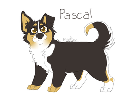 Pascal by foxee-kee