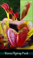 Venus Fly Trap Pack by brenbren