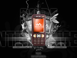 W890i Pure Entertaiment by rms-design