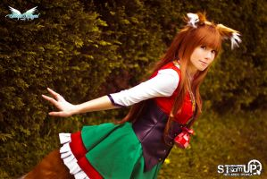 Holo cosplay by MiciaGlo