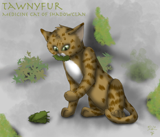 Request: Tawnyfur by FantasiaKitty