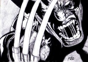 Faces of Anger--Wolverine by Nose-Meat