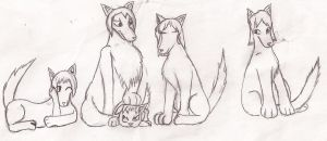 Wolf Pack by FlamingStars