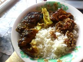 rice n catfish by plainordinary1