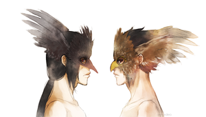 The Crow and the Hawk by dolphinabottle