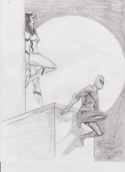 Spider man and woman by charlesdeshields9167