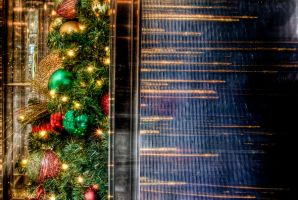 Christmas tree reflections by spudart